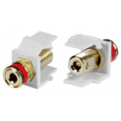 Leviton RCA Keystone Jacks, Female to Female